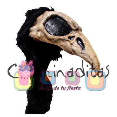 Crow Bird Helmet